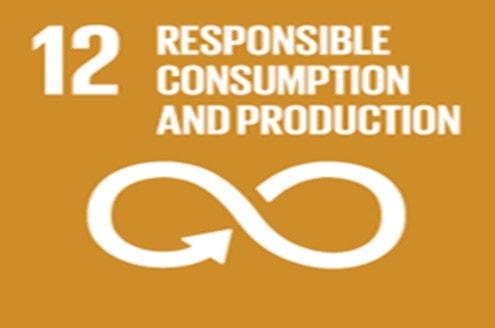 icon responsible consumption